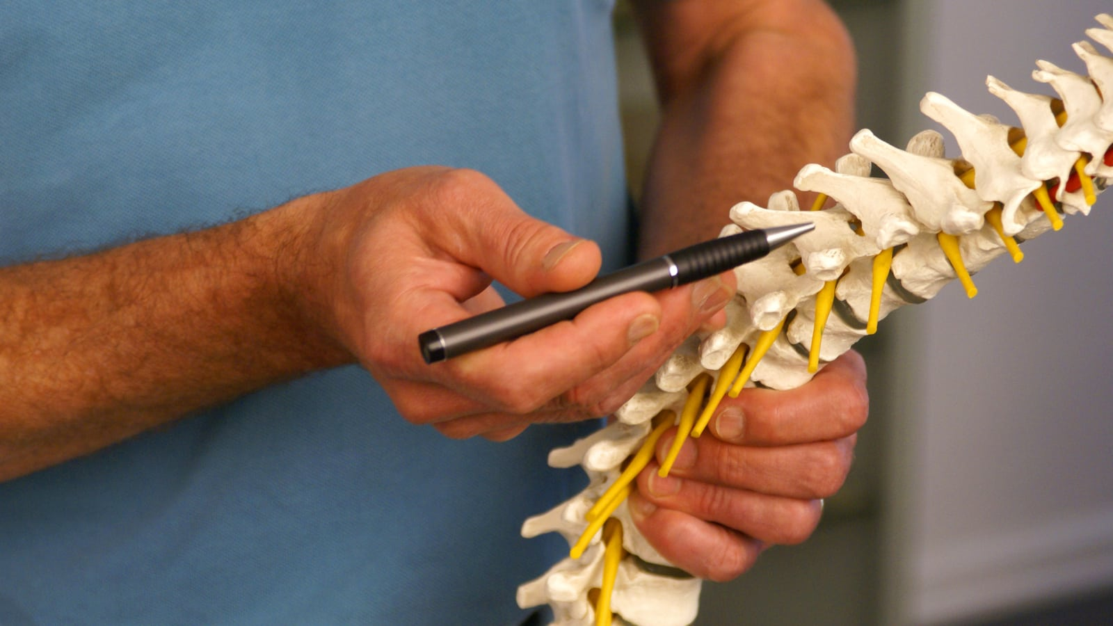 Professional demonstrating a spinal cord injury.